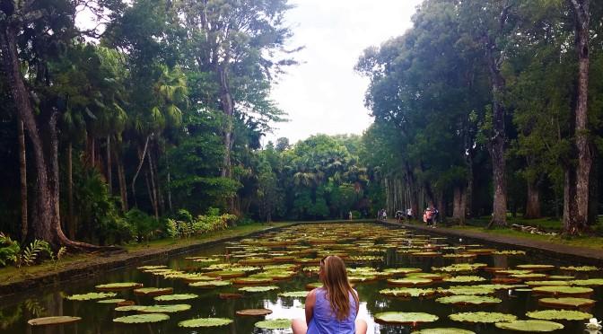 Mauritius Botanic Garden